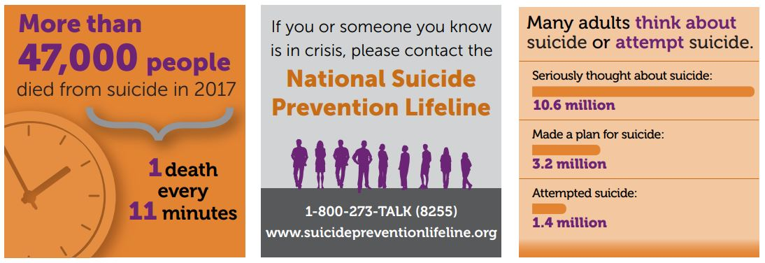 CDC suicide infographic